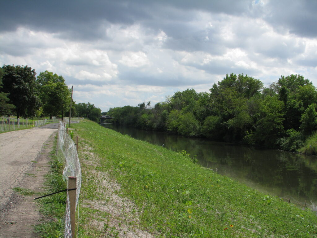 A pedestrian trail on the left, the river on the right, and native plantings in between.