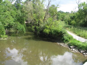 Shallow river with trees on both sides and a pedestrian trail alongside it.